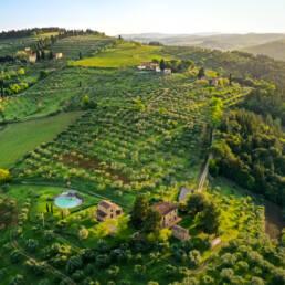 veduta aerea, vigneti, olivi, piscina, podere meraviglie, fattoria le fonti
